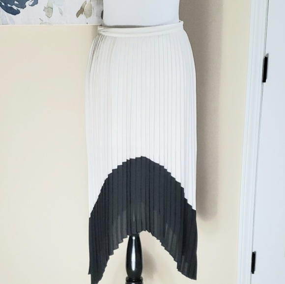 Express Dresses & Skirts - Gorgeous chic pleated skirt!!!